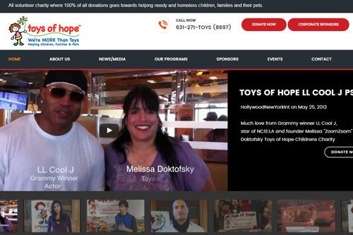 Non Profit: Toys of Hope